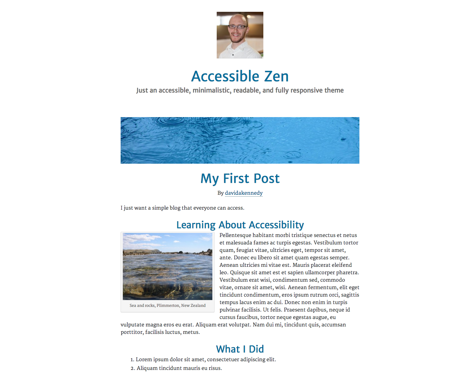Accessible Zen demo.